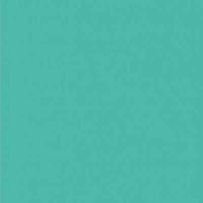 Картинки по запросу коралл сильва
